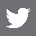 Twittericon (2)